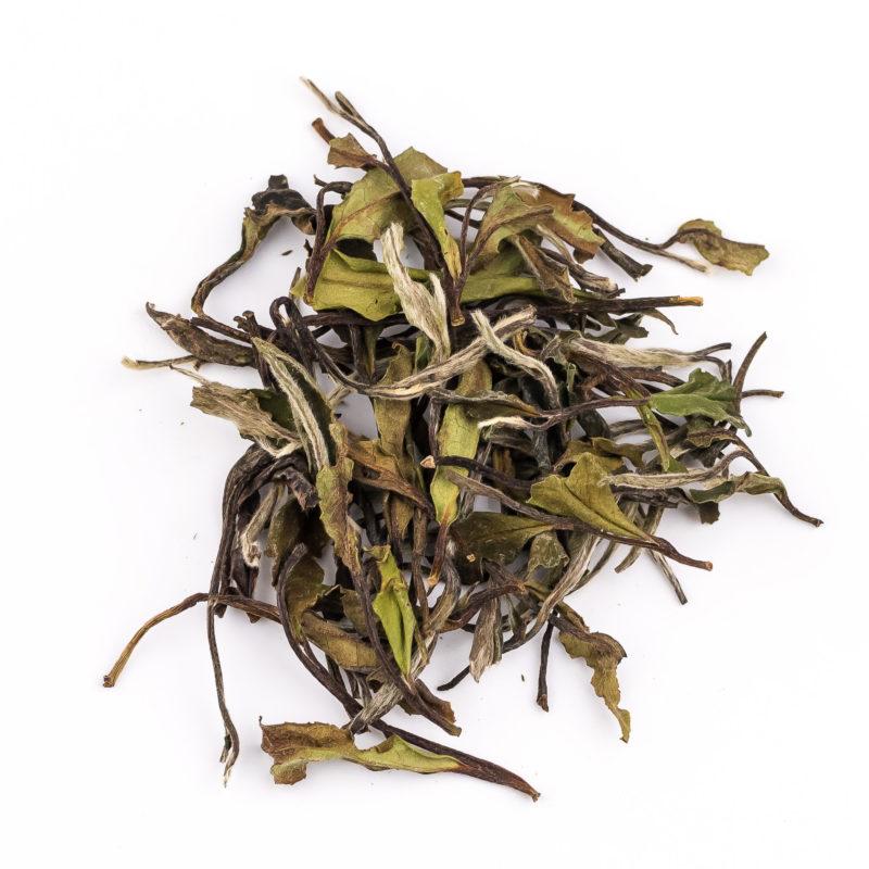 white peony A - white tea
