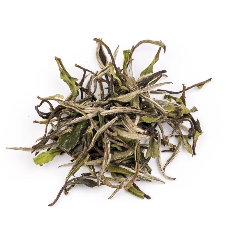 White Peony Premium - white tea