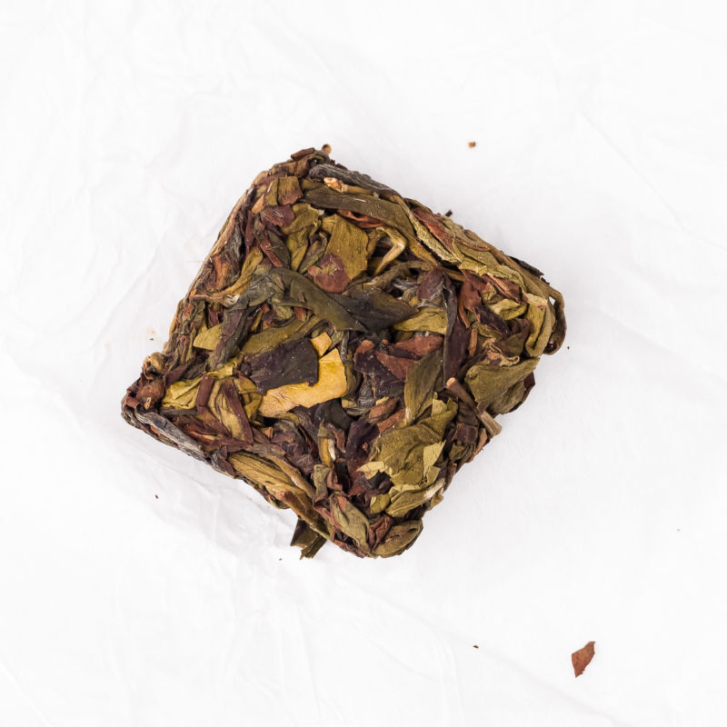 Oolong ZP Narcissus